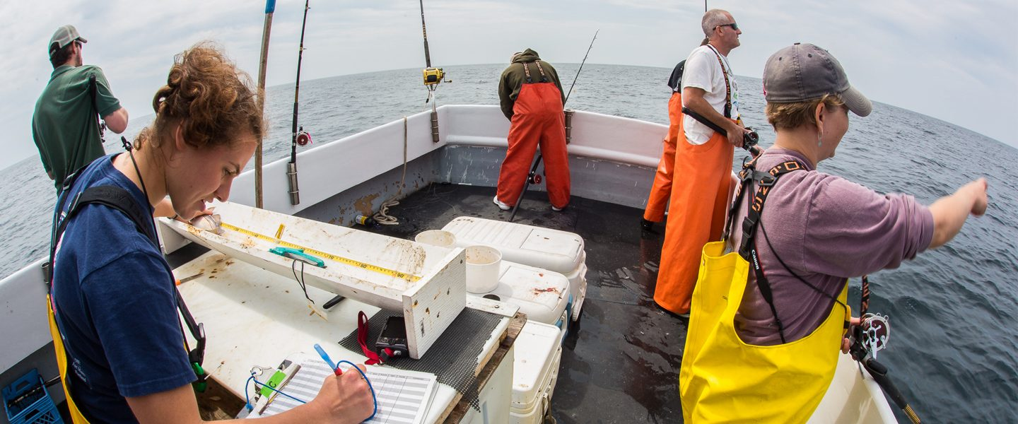 researchers conduct field work on back of fishing boat