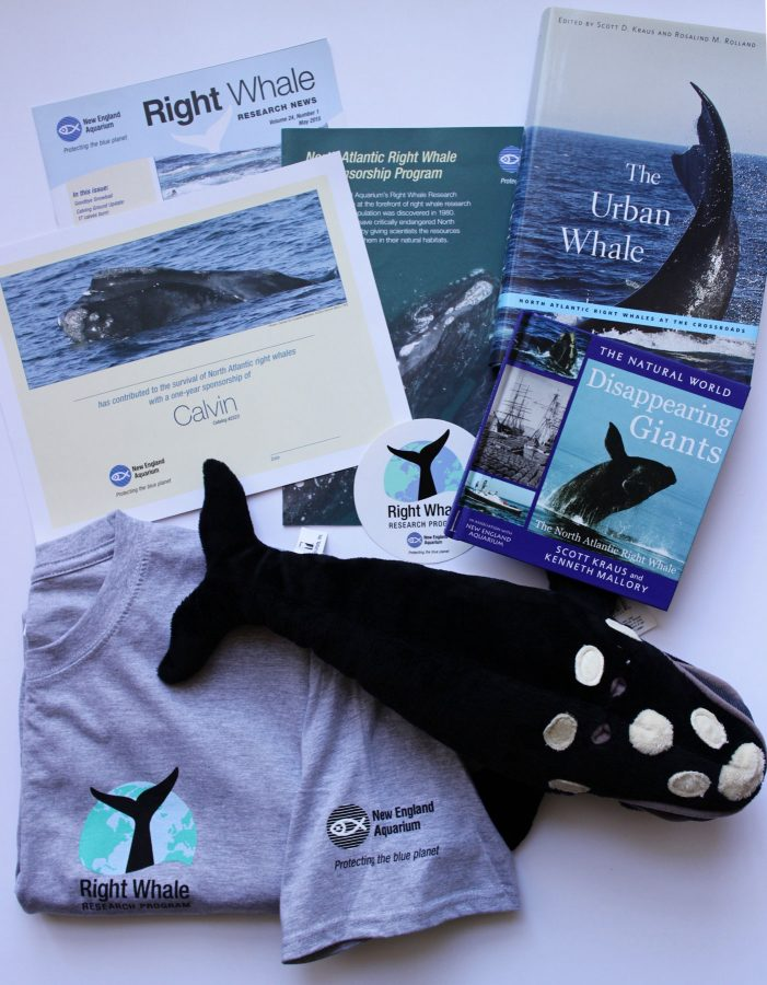 array of right whale sponsorship materials