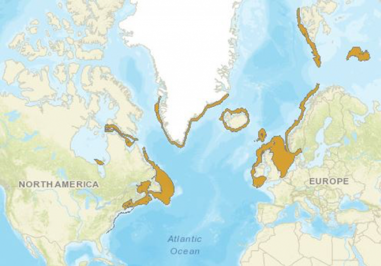 Geographic range of thorny skate in the North Atlantic (MAP)