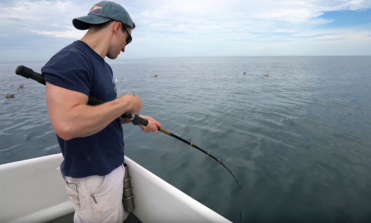 researcher reels in fish
