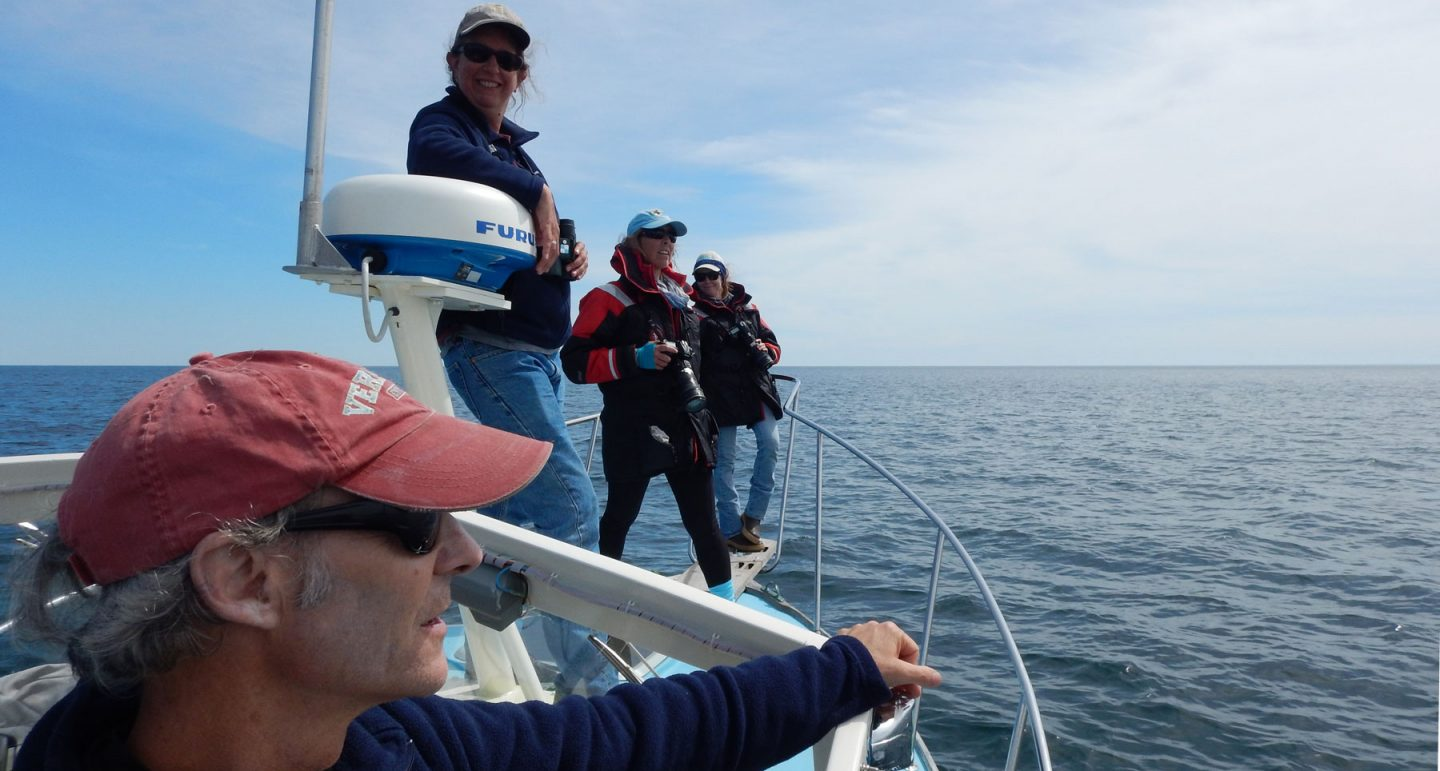 researchers on boat surveying