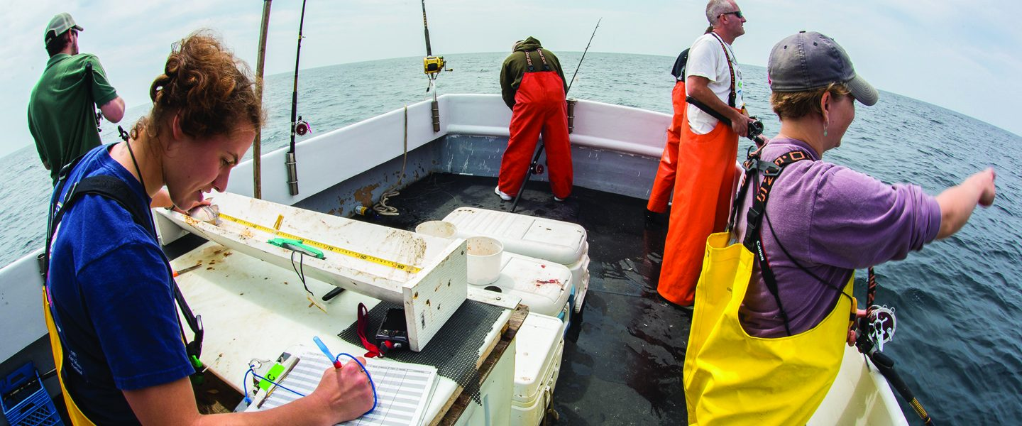 [IMG] Anderson Cabot Center scientists catch haddock during a research cruise,