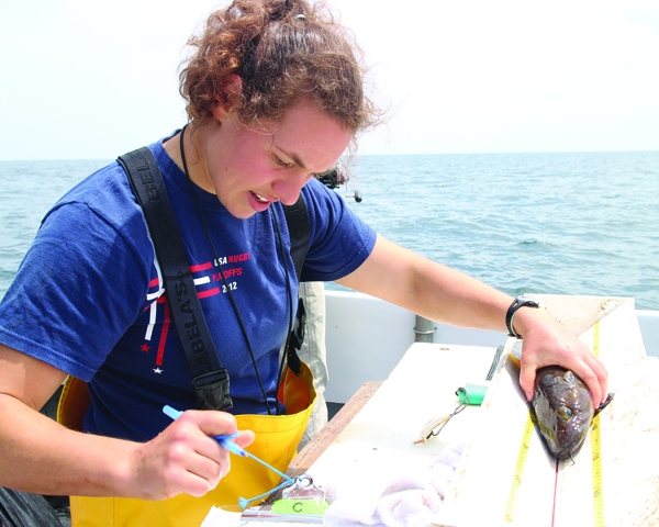 [IMG] Anderson Cabot Center scientist Emily Jones measure a haddock.