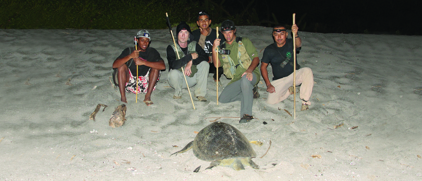 [IMG] Members of an MCAF program pose with a sea turtle on a beach.