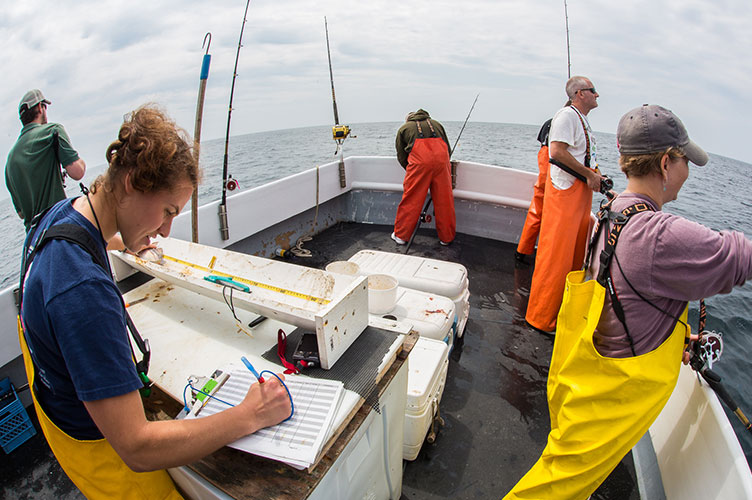 [IMG] Anderson Cabot Center scientists fish for Haddock on a boat during a research trip. Copyright: DeNeef.