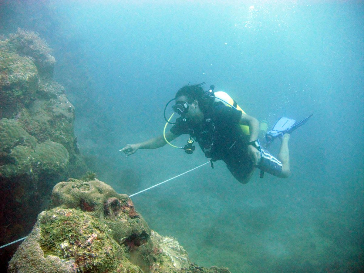 [IMG] SCUBA diver demonstrates transect lines
