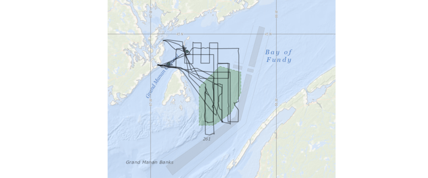 R/V Nereid August survey effort through August 23.