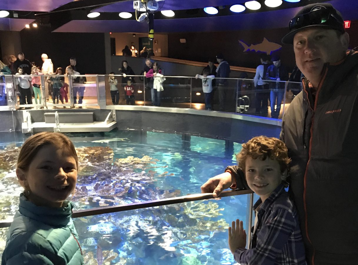 Abigail and her family enjoyed a tour of the New England Aquarium.