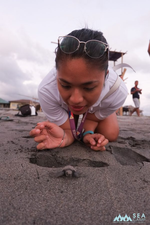 Anna with a hatchling sea turtle.