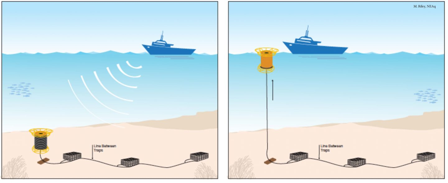 An artist's rendition of ropeless fishing technology.