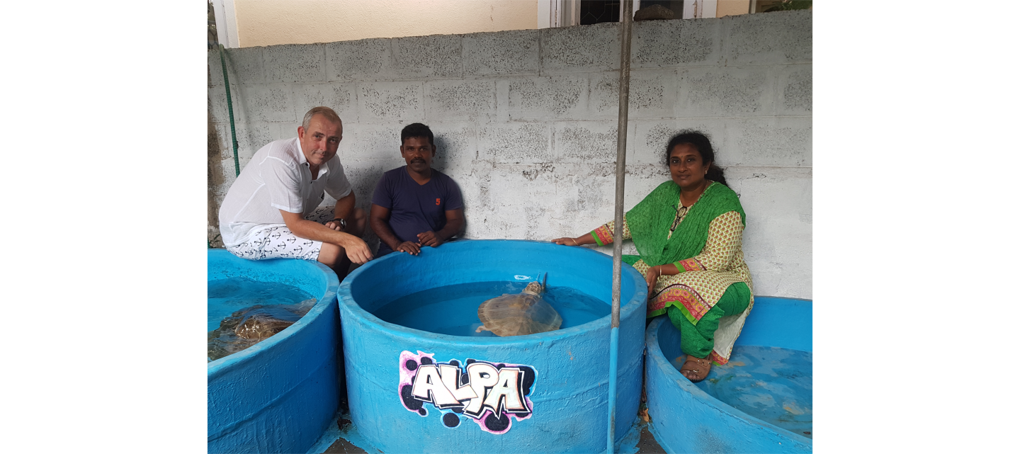 MCAF grantee Dr. Supraja Dharini (far right) and Pugalarasan T A. of the TREE Foundation and MCAF Fellow John Flynn (far left) of Wildseas discuss a treatment plan for another olive ridley sea turtle Jojo.
