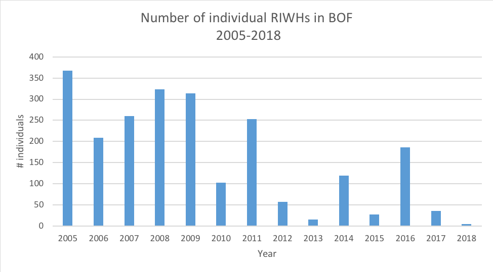 CHART: Number of individual right whales in the Bay of Fundy from 2005-2018.