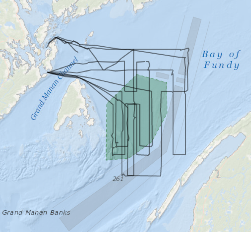 Our July survey effort from the last two weeks in the Bay of Fundy.