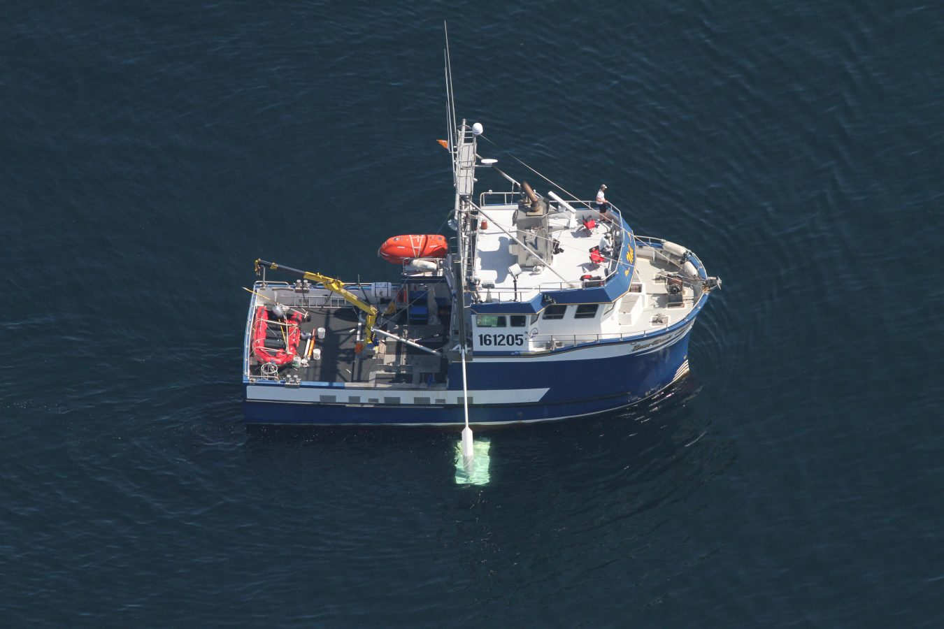 An aerial view of the J.D. Martin.