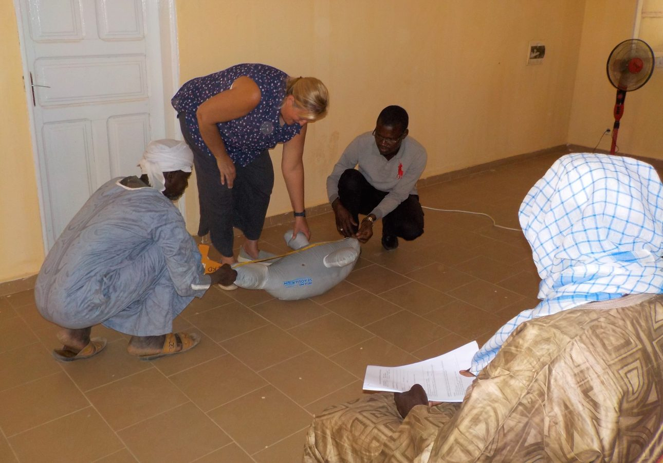 Lucy training manatee measurements in Matam Senegal