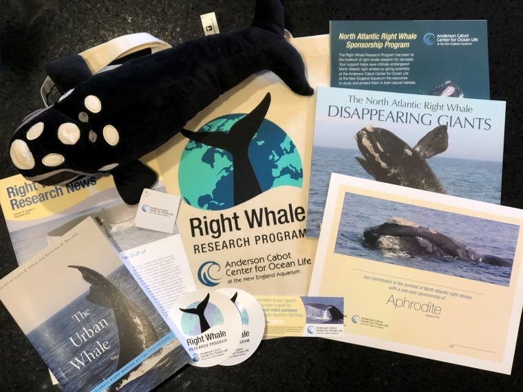 Right whale sponsorship package